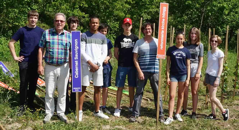 Die Arbeit ist vollbracht: 25 Rebstöcke wurden in die Erde des Rebsortengarten gesetzt.