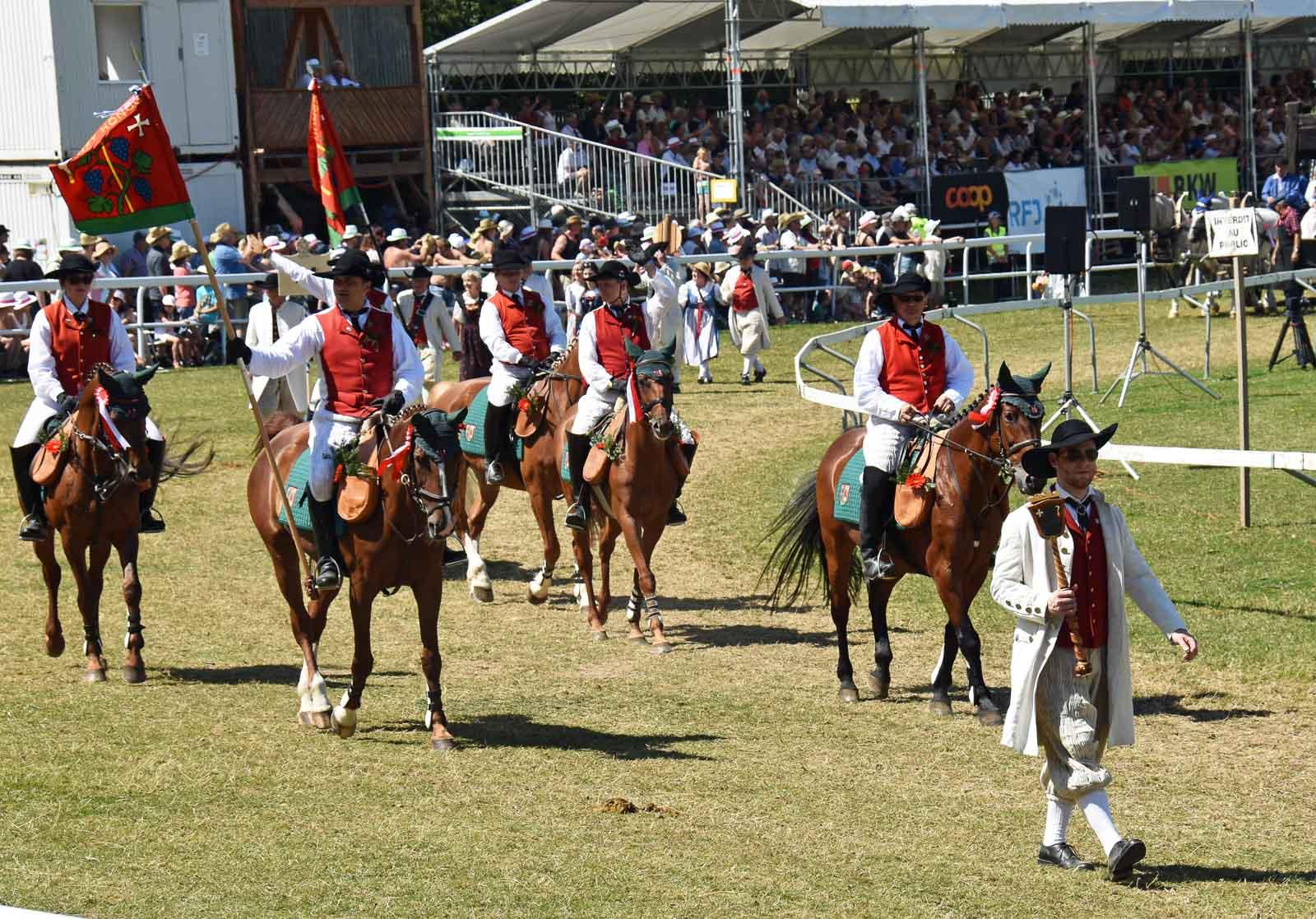 Die Zunft Höngg mit ihren Reitern