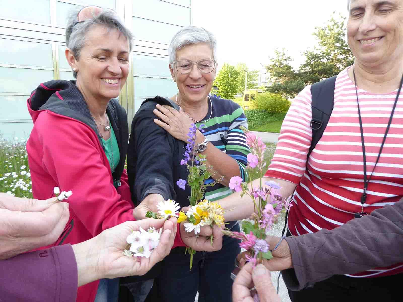 Bunter Strauss an gepflückten Blütenpflanzen, von den Teilnehmerinnen nach Farben sortiert.