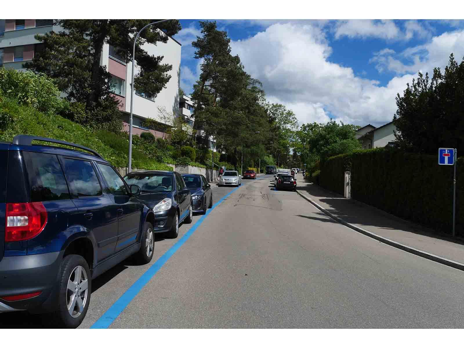 87 der insgesamt 181 Parkplätze sollen an der Segantinistrasse entfernt werden.