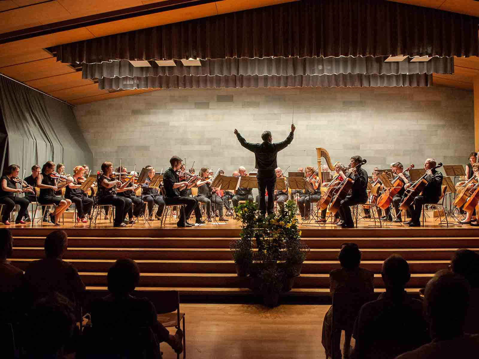 Die Sinfonietta Höngg verbindet Beethoven mit Musik englischer Komponisten.