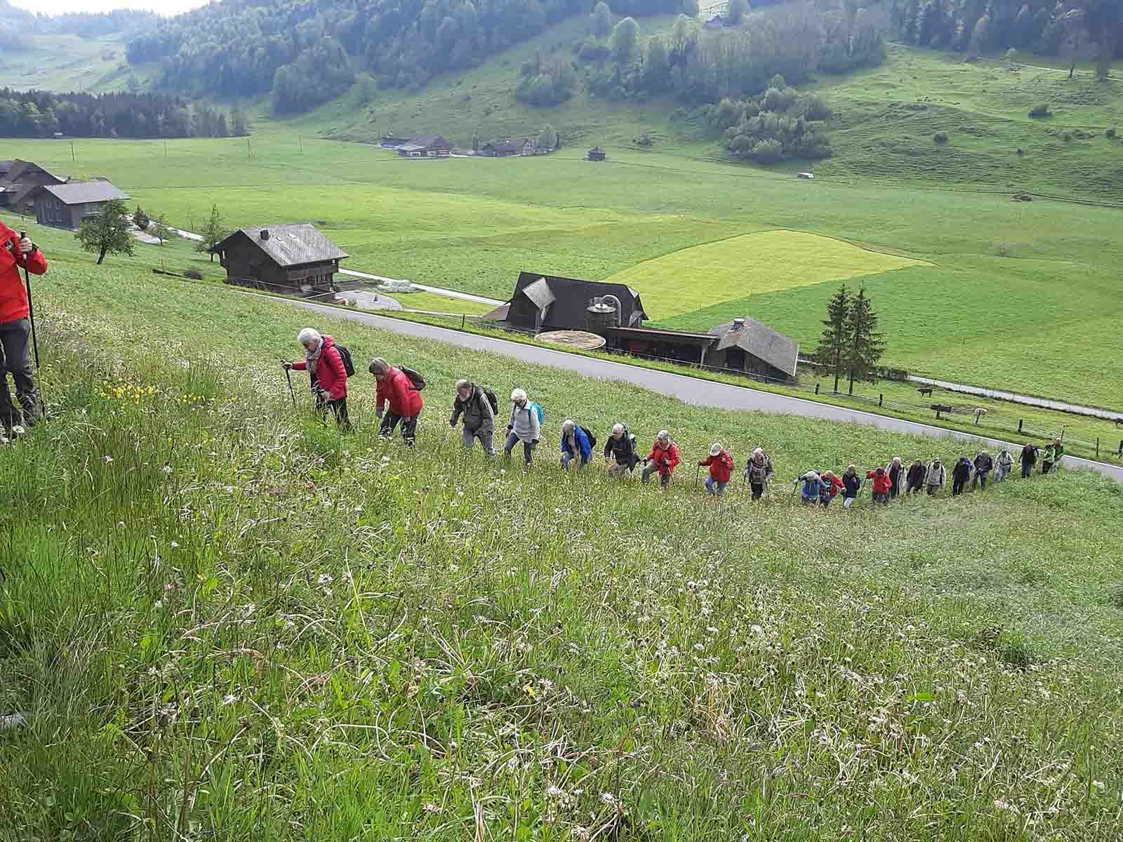 Die Wandergruppe bewältigt den Aufstieg von Obbürgen nach Bürgenstock.