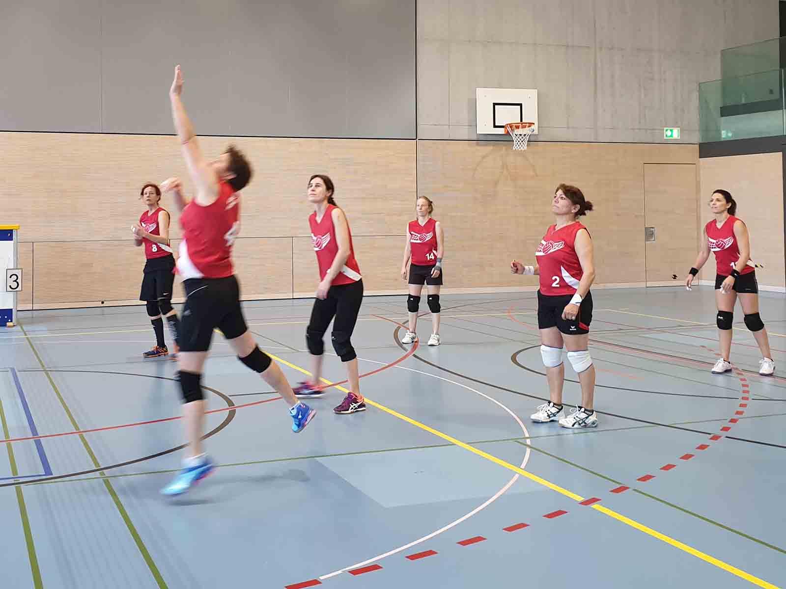 Voller Einsatz bei Volley Höngg