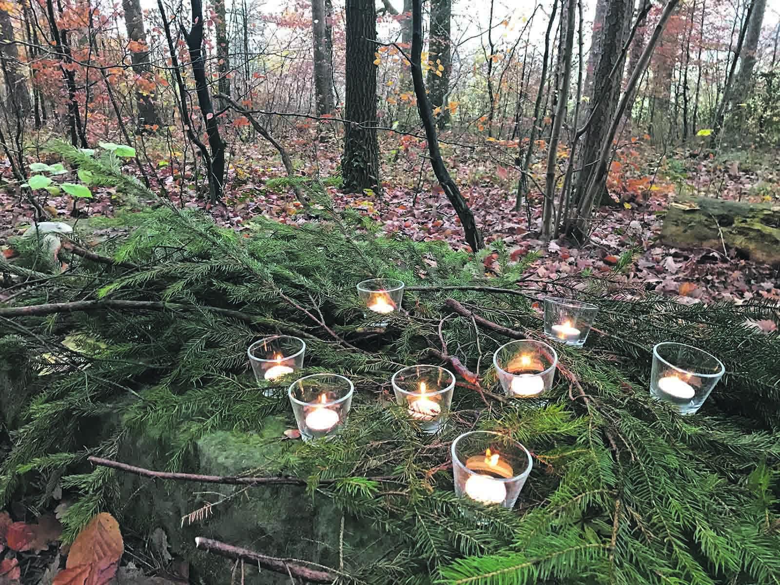 Naturspaziergang am 1. Advent