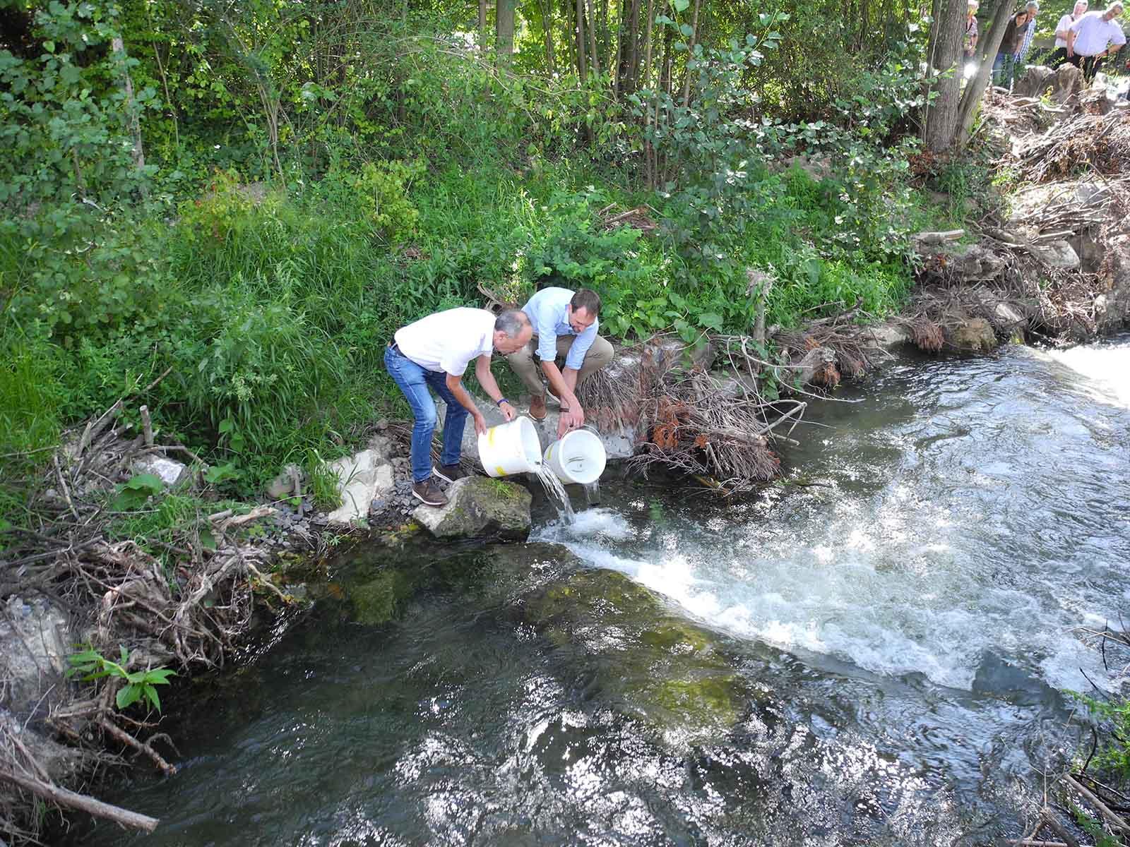 Ein symbolischer Akt: Stadtrat Richard Wolff und Projektleiter Thomas Hauser setzten zur Einweihung einige Fische aus.