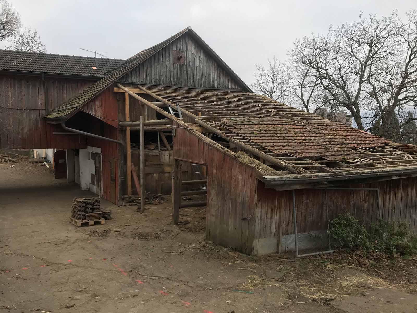 Die Pferde sind umgezogen, das Dach ist bereits weg: Der Umbau hat begonnen.