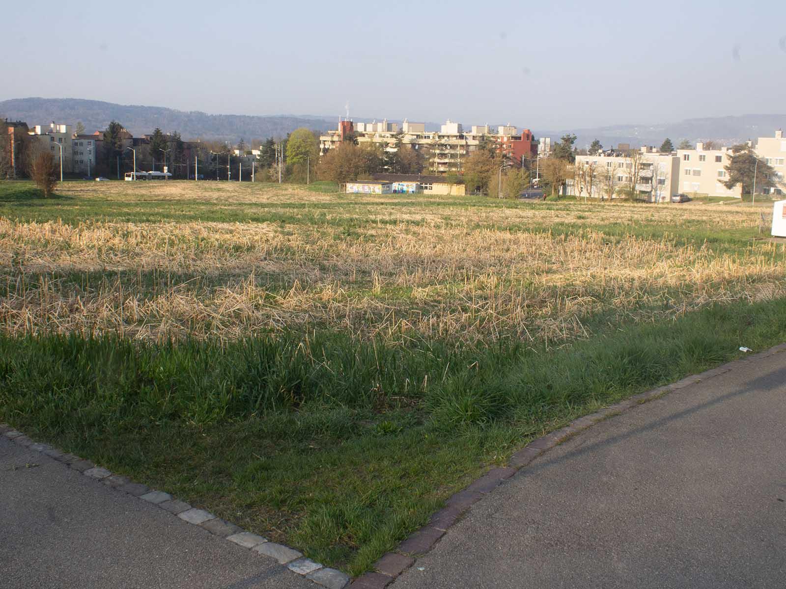 Grünwald Areal: Was und wann hier einmal gebaut wird?