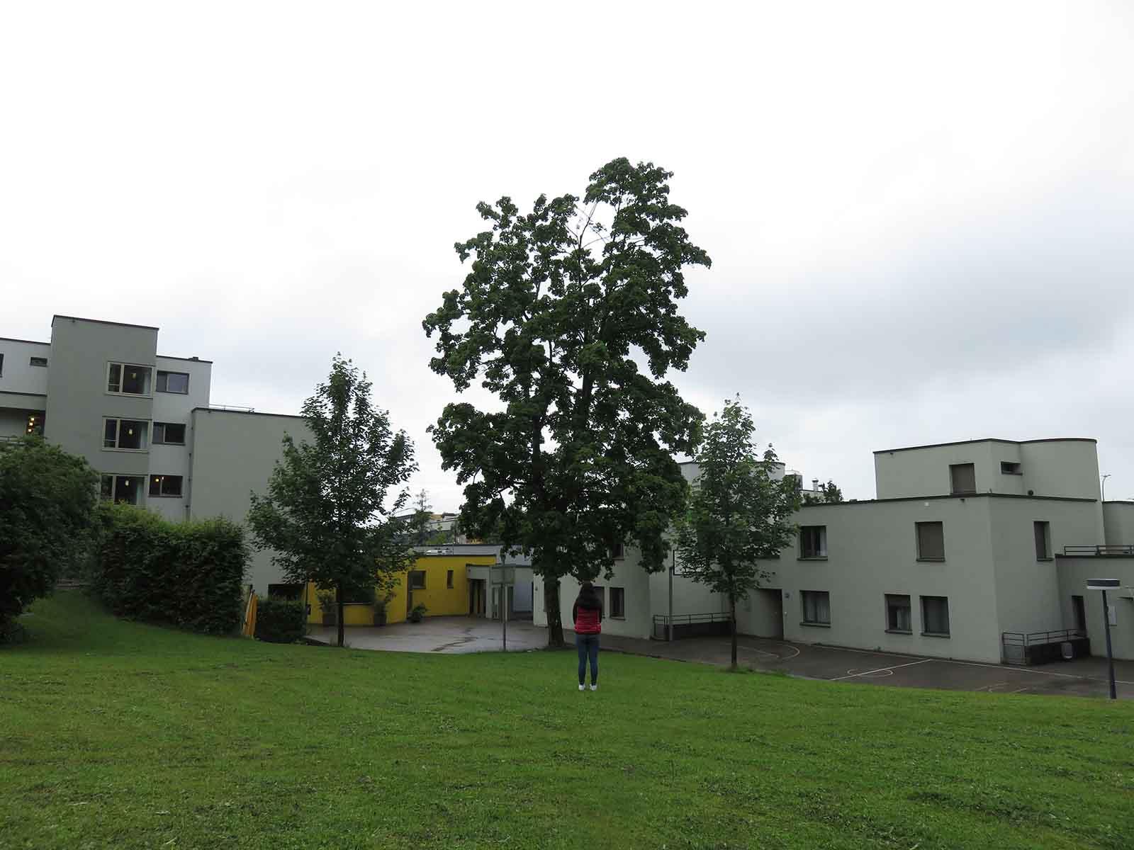 Jugendliche auf dem Areal des Wohn und Tageszentrums Heizenholz.